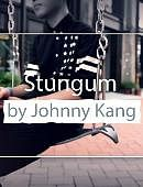 Stungum DVD