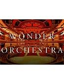 Wonder Orchestra Trick