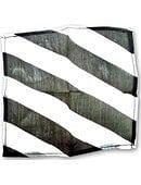 Zebra Silk 18